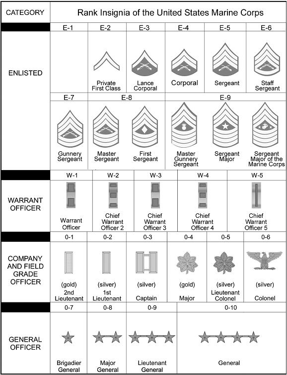 Marine corps rank structure essay